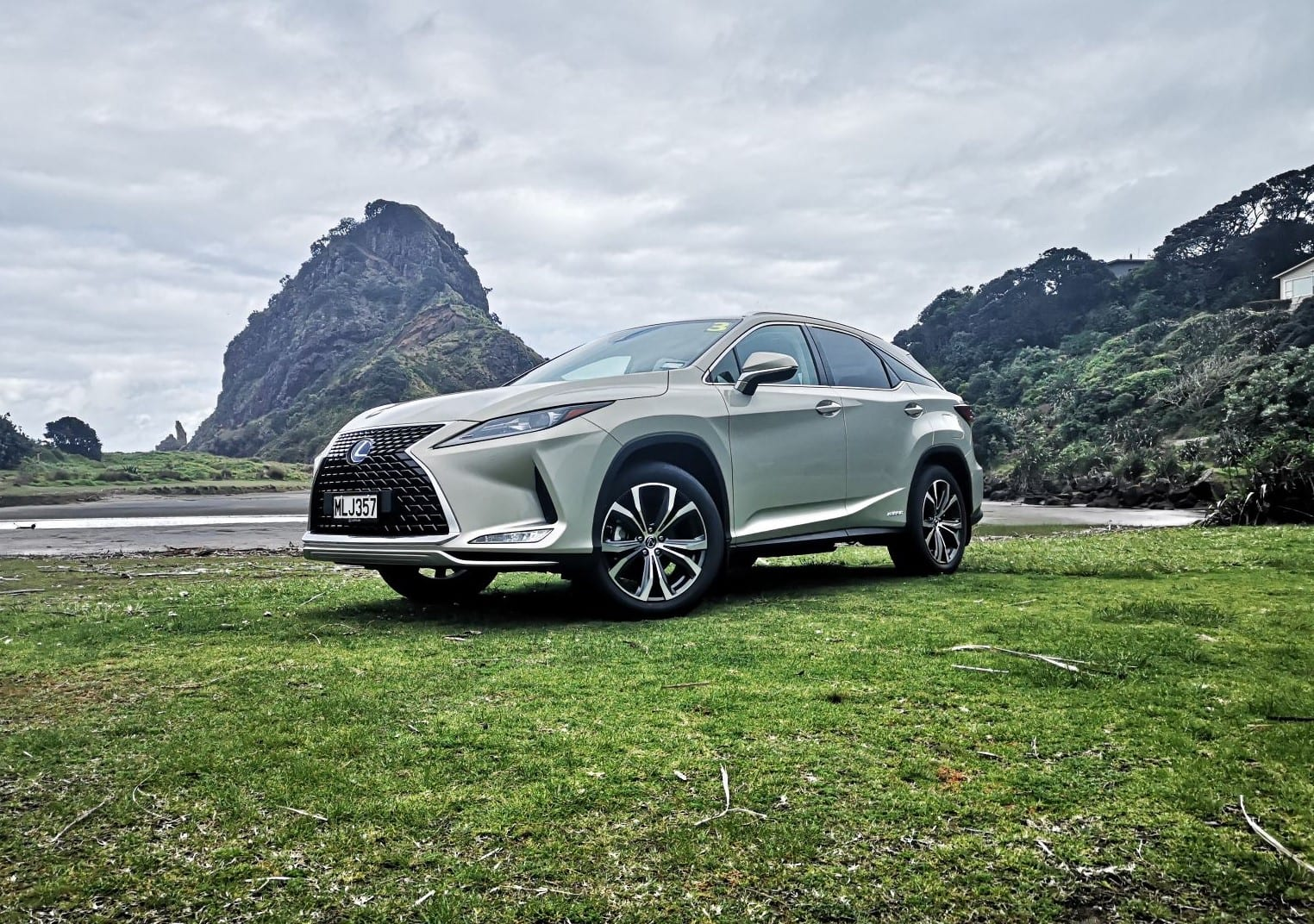 2020 Lexus RX Review NZ