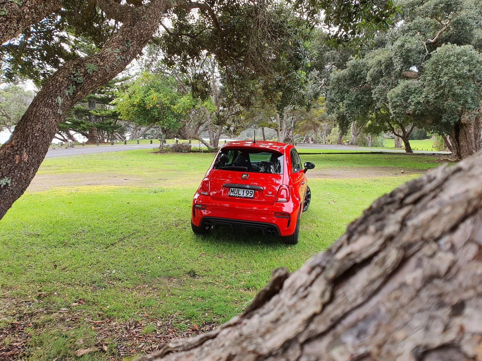 Looking at the red Abarth 595 through the trees.