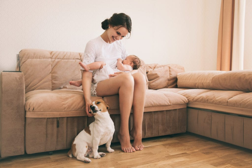 Kelly Mcfarlane Dogs and babies 1